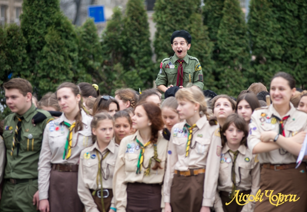 """scout"""""""""""
